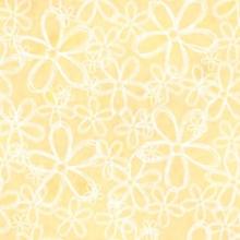 white-flower-yellow